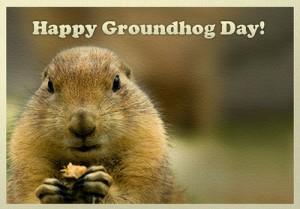 Happy-Groundhog-Day-2015-4-300x209